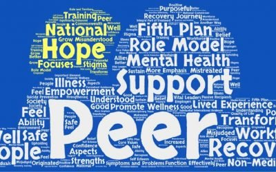 Promoting Peer Work in the NT – Project Update